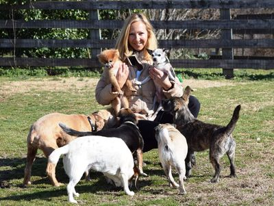 Carla and dogs