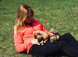 Carla and puppies